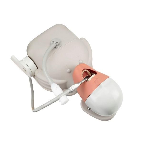 Стоматологический тренажер-ианекен и рабочее место